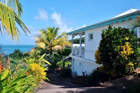 La Trinite, Martinique: Un petit goût de revienez-y.  Bliss votre école de Surf en Martinique