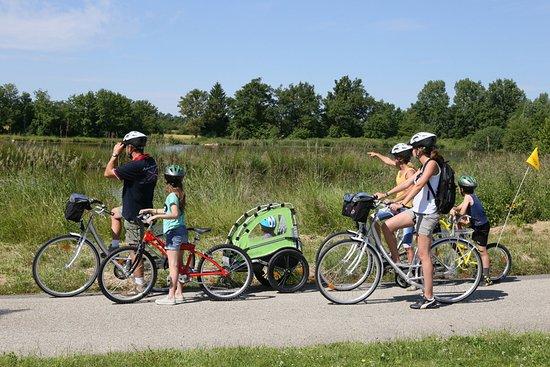 Villars-les-Dombes, Francia: Location de vélos
