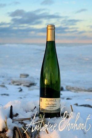 Wettolsheim, Francja: Les Vins d'Alsace Antoine Ehrhart au Québec - Coucher de soleil sur la banquise Parc National du