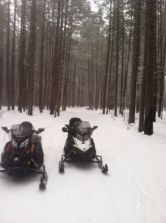 Bigfork, Μινεσότα: We are centrally located amongst northern Minnesota's finest snowmobile trails.