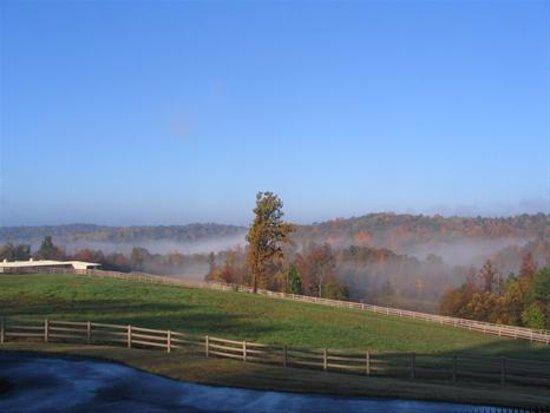 Gillsville, GA: Morning at River Grove Ranch