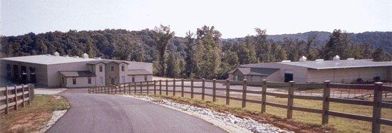 Gillsville, GA: Indoor Arena and Barn