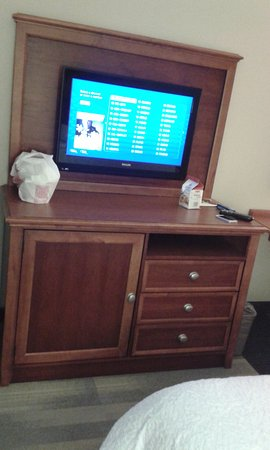 Hampton Inn Harriman Woodbury: Televisor