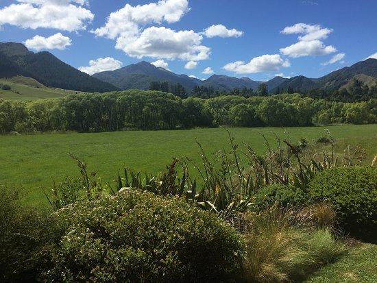 Murchison, Νέα Ζηλανδία: View from my cottage