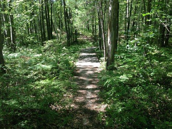 Port Austin, MI: Huron County Nature Center Trail