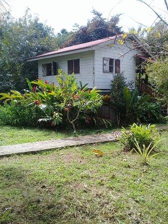 San Pedro Columbia, Belize: Guest house