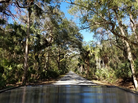 The Loop And Trail In Ormond Beach Fl
