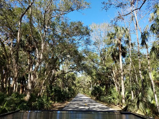 The Loop And Trail In Ormond Beach Fl Picture Of Tripadvisor