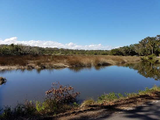 The Loop and Trail in Ormond Beach, FL