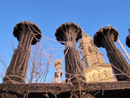 Longford, İrlanda: Telas de araña congeladas