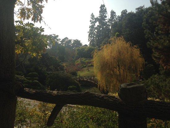 San Marino, CA: View of Japanese garden
