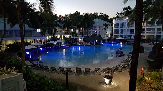 Palm Cove Picture