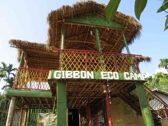 Gibbon Eco Camp