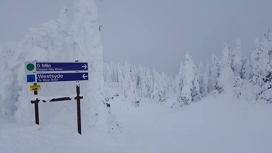 Sun Peaks, Canadá: Snow ghosts at top of mountain