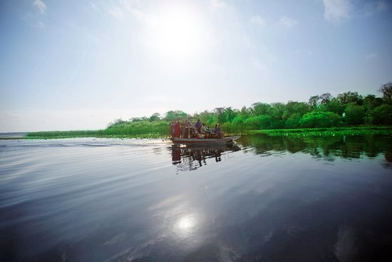 Spirit of the Swamp Airboat Rides: Let us take you there...