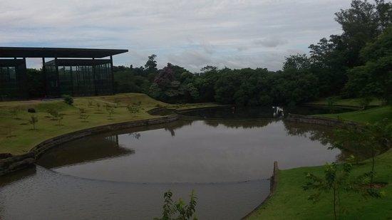 Jardim Botanico de Londrina