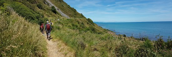 Paekakariki, New Zealand: The track is wide enough and well maintained