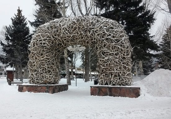 Antler Arches of Jackson