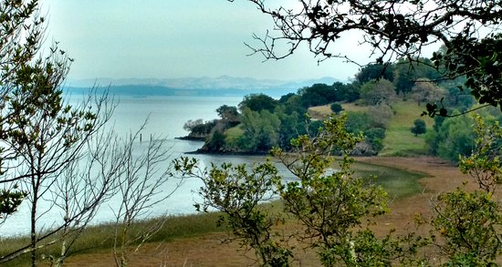 Things To Do In Modesto >> China Camp State Park (San Rafael, CA): Top Tips Before You Go - TripAdvisor