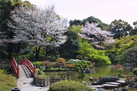 新日本庭園酒店