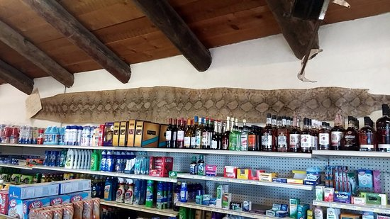 Datil, Nuevo Mexico: large snake skin in grocery