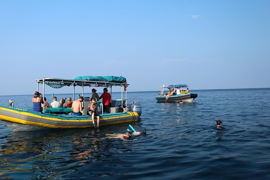 Sea Quest Snorkel Tours: a beautiful day in the bay.