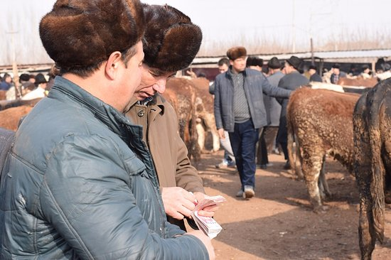 Kashi, China: Negotiating sales at Sunday livestock market