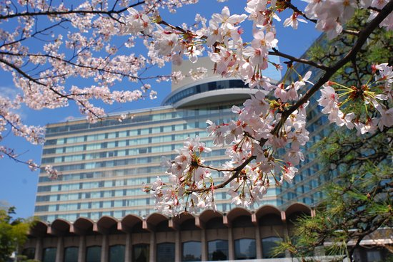 Hotel New Otani Tokyo EXECUTIVE HOUSE ZEN : The Main bldg with SAKURA