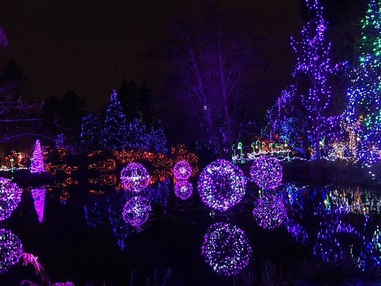 beautiful lights - picture of vandusen botanical garden, vancouver