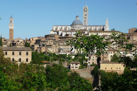 Private Walking Tour: Siena and its...