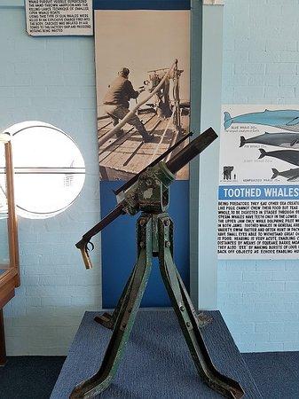 Killer Whale Museum: Harpoon Gun