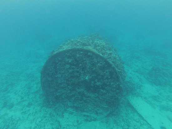 Wreck of the Matai: Part of the shipwreck, not far below surface