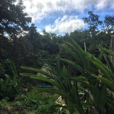 Windward Side, Saba: photo2.jpg