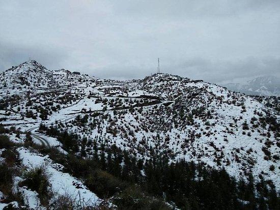 Mandi District, อินเดีย: Daynapark Snow