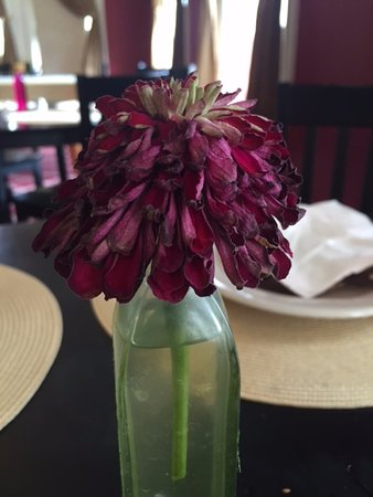 Gruene Homestead Inn: The flowers on the tables were dead and wilted. Not attractive at all.