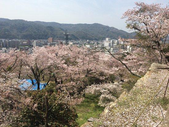 Kakuzan Park (Tsuyama Castle): photo2.jpg