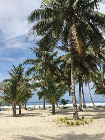 Upolu, Samoa: photo9.jpg