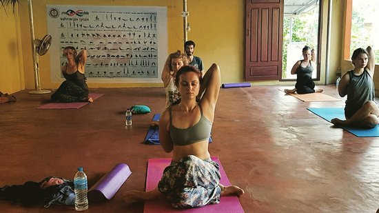 Yog Mandala: IMG_20170110_224636_835_large.jpg