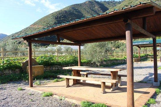 Oliveri, อิตาลี: Area picnic