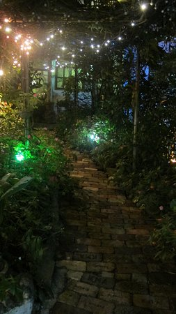 Sonya's Garden B&B: The place lights up colorfully in the evening :)