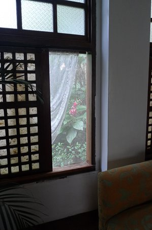 Sonya's Garden B&B: capiz windows with screen so no need to worry about bugs :)