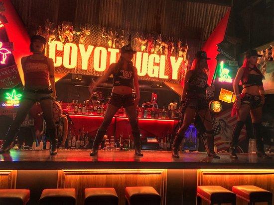 コヨーテアグリーサルーン, Coyote ugly saloon roppogi🔥
