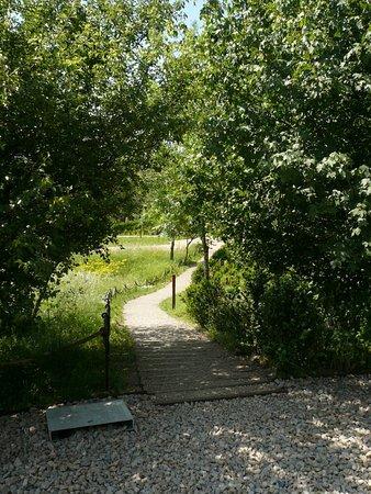 Solutre-Pouilly, Γαλλία: Jardin Botanique