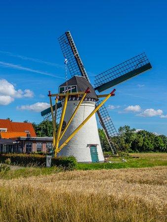 Scharendijke, The Netherlands: le moulin