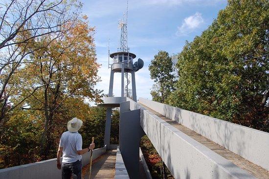 Townsend, TN : Summitt of Look Rock, locatedon Foothills Parkway