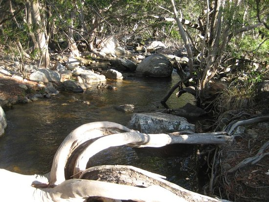 Mareeba, Australia: Wish we'd just spent time at this lovely creek area near the car park!