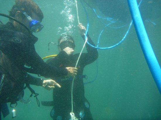 Port Noarlunga, Australia: SNUBA - navigating our way down/up with Benny!