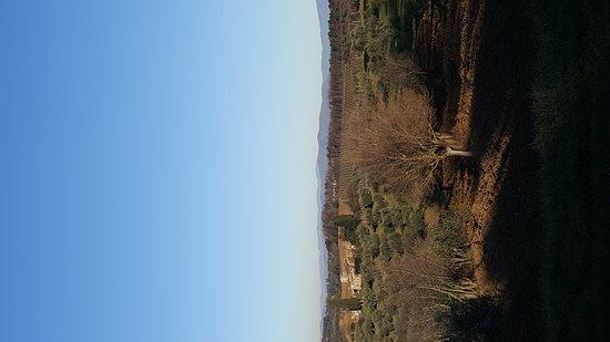 Castello di Bibbione: 20161231_152143_large.jpg