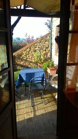 Monterotondo Marittimo, Italien: Capodanno a 4 zampe