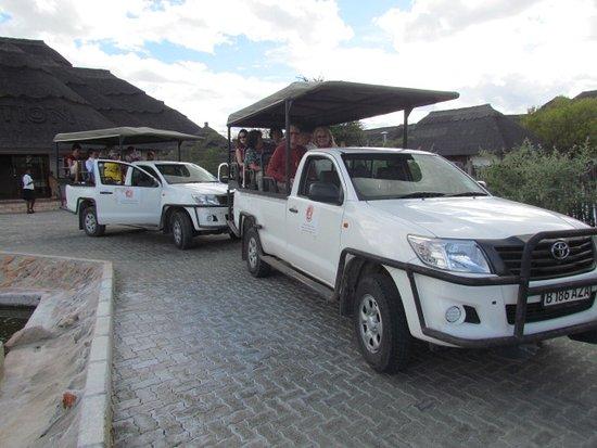 Pelican Lodge & Camping: Safari Jeap